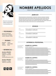 modelo curriculum vitae ejemplos
