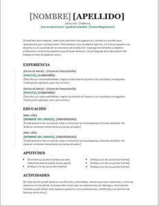 plantilla curriculum vitae español word