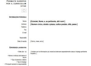plantilla curriculum europeo
