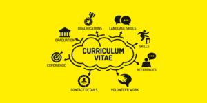 formatos de curriculum vitae word