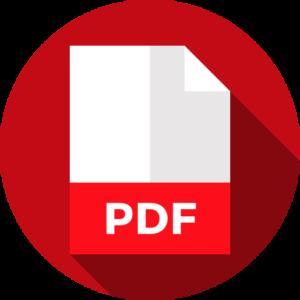 pdf formato curriculum vitae